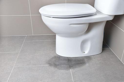 נזילה בשירותים מלמטה